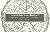 Coupon Offer: $15 OFF Stump Removal